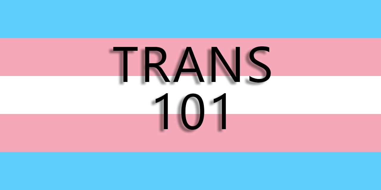 Gay student organization